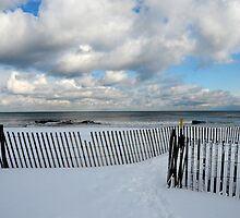 Winter Beach by joAnn lense