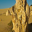Pinnacles Three by Werner Padarin