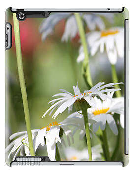 A daisy a day - iPad, iPhone and iPod case by Chris Armytage by ArmytageArts