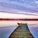 Reflections on a sunset by LadyFi