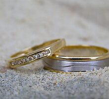Wedding Rings by Michelle Ricketts