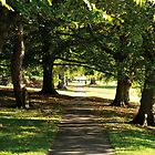 Victoria Park, Bath by beautifulbath