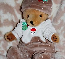 Christmas Pudding Teddy by AnnDixon