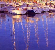 marina de belém by terezadelpilar~ art & architecture