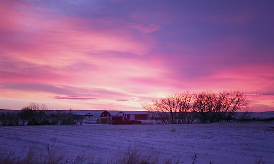 Winter Prairie Sunrise by Michael Collier
