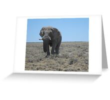 Lonely walk across the plains Greeting Card