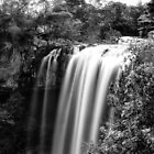 Rainbow Falls by ChrisMcKay