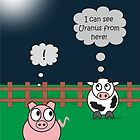Funny Animals Uranus Design Hilarious Rudy Pig & Moody Cow    by Catherine Roberts