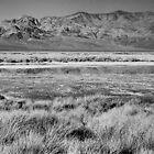 Death Valley Winter from Ashford Mill by Adam  Austin