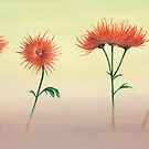 Spider Mums by Phillip Compton