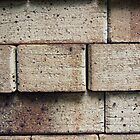 Bricks iphone/ipod by Vanessa Barklay