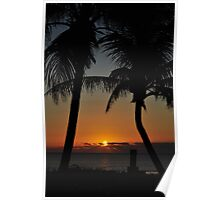 Sunrise supporting the palm trees Poster