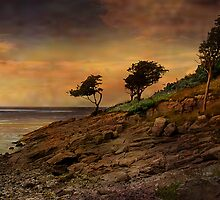 Silverdale at sunrise. by Irene  Burdell