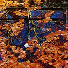 The Well at Berkswell, Autumn Reflections by John Evans