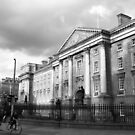 Trinity College, Dublin by Esther  Moliné
