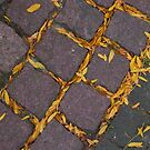 cobbles in autumn by Jicha