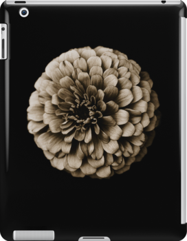 Life Is In The Details VIII [Print & iPad Case] by Damienne Bingham