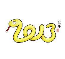 2013 Year of the Snake by 73553