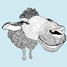 Sheep by caseysplace