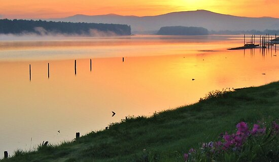 Columbia River Sunrise by Randy Richards