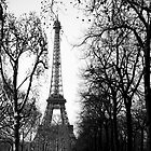 Eiffel Tower by Laura Stanley