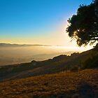 San Luis Obispo Fog by judsonphoto