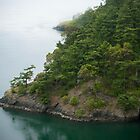 Turquoise Waters of Deception Pass  by timothysilva