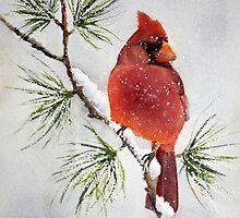 Mr Cardinal by Bobbi Price