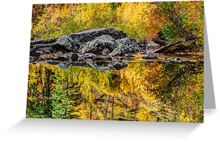 Tumwater Canyon Reflections by Jim Stiles