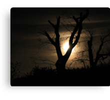 Moonlight and Tree Canvas Print