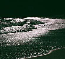 Silver Seas by Fiona Christensen