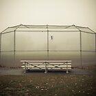 batting cage by Ian Ross Pettigrew