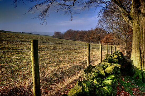 Chevin Dry Stone Wall #1 by Colin Metcalf