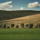 3 Layers of Country by Alexander Kesselaar