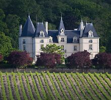 French castle in vineyards by Carine LUTT