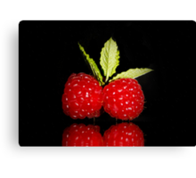 Raspberry for Two Canvas Print