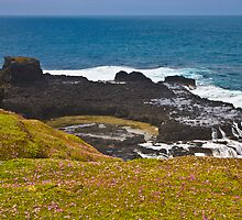 Natural Rock Pool The Nobbies Phillip Island Vic australia by PhotoJoJo
