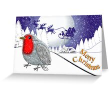 Merry Christmas from the Baby Robin card Greeting Card