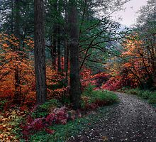 Just Around The Corner by Charles & Patricia   Harkins ~ Picture Oregon