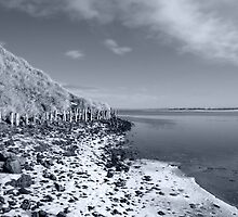 erosion protection in irelands winter by morrbyte
