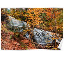 Mohawk Falls Among The Autumn Leaves Poster