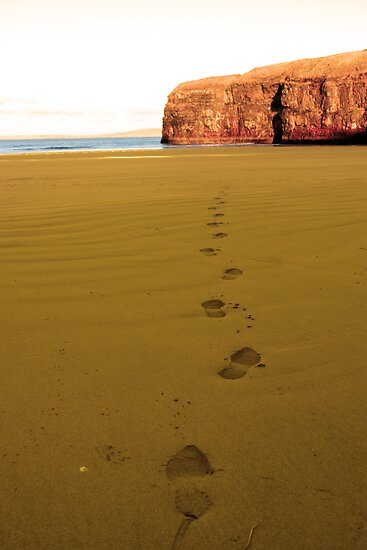 footprints in sandy empty beach on a beautiful winters day by morrbyte