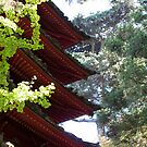 Pagoda in Japanese Tea Garden, San Francisco by Paul Roberts