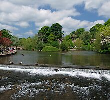 The Riverside and Weir, Bakewell  by Rod Johnson