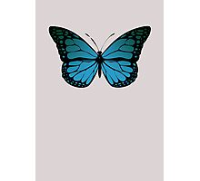 Blue Monarch Butterfly Photographic Print