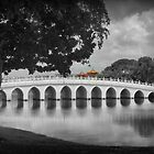 The Bridge from Japan to China (3) by cullodenmist