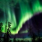 Nov 13th/12 Auroras #3 by peaceofthenorth
