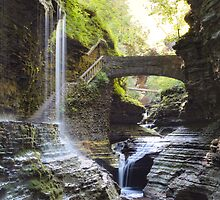 Watkins Glen After The Storm 8X10 by Gene Walls