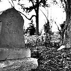 Anna - Prospect Hill Cemetery by SymmetryinChaos