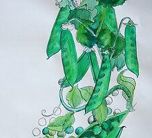 Peas by Lisa Murphy